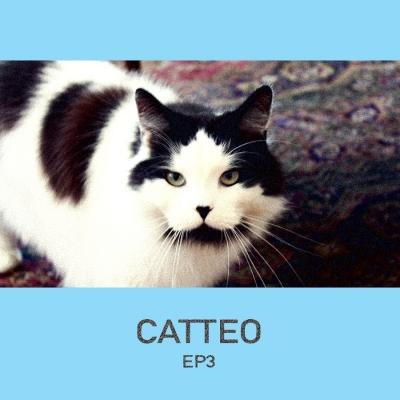 Catteo